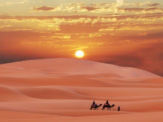 sahara-desert-morocco-berber-sunset-camel-sand-wallpaper-230742